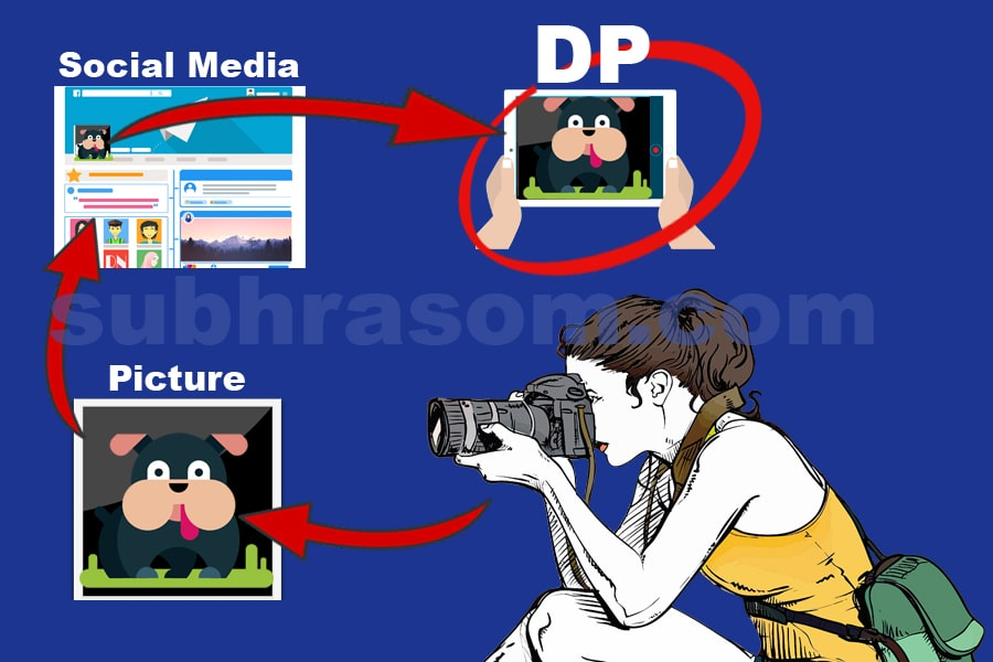 DP steps